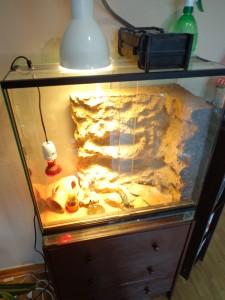 Glasterrarium mit Unterschrank