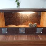 achatschnecken haltung und infos zwerggeckos. Black Bedroom Furniture Sets. Home Design Ideas